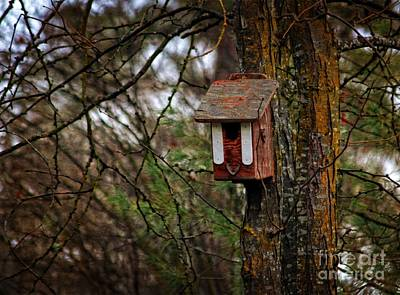 Photograph - Waiting For Future Occupants  by Marjorie Imbeau