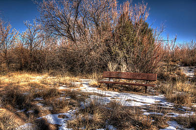 Photograph - Waiting For Spring by Chuck Summers