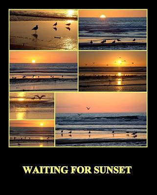 Photograph - Waiting For Sunset by AJ  Schibig