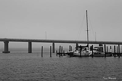 Gulf Photograph - Waiting For The Sun by Debra Forand