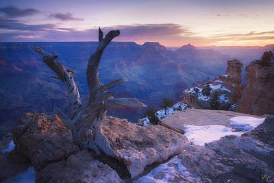 Yaki Photograph - Waiting For The Sun by Peter Coskun