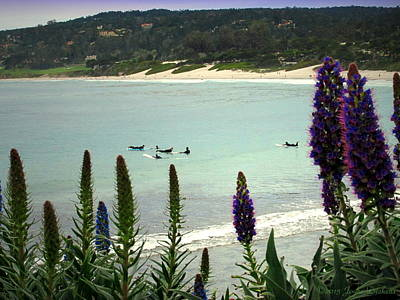 Photograph - Waiting For The Waves At Carmel Beach  by Joyce Dickens