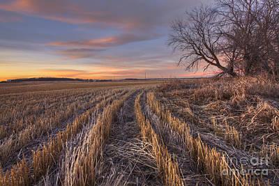 Alberta Landscape Photograph - Waiting For Winter by Dan Jurak