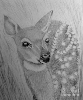 Drawing - Waiting In The Tall Grass by Peggy Miller