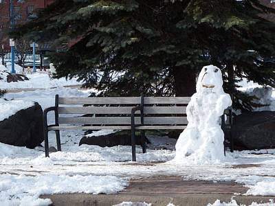 Duluth Photograph - Waiting On Spring by Alison Gimpel
