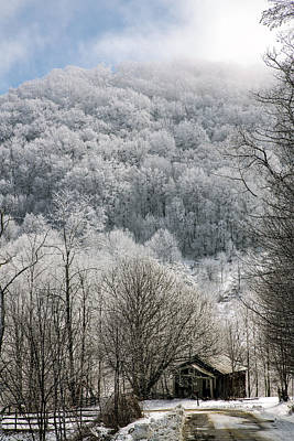 Going Green - Waiting Out Winter by John Haldane