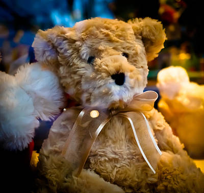 Toy Shop Photograph - Waiting To Come Home by Ronda Broatch
