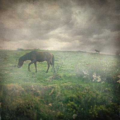 Impressionism Photos - Wake me up by Zapista Zapista