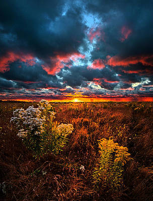 Waking Angels Art Print by Phil Koch