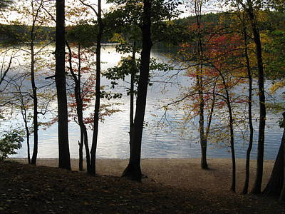 Walden Pond In Autumn Art Print