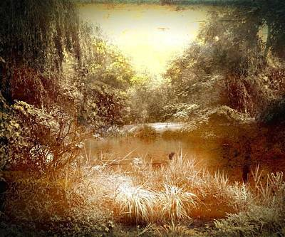 Country Scenes Mixed Media - Walden Pond by Femina Photo Art By Maggie