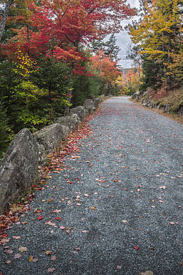 Maine Roads Photograph - Walk Along by Jon Glaser