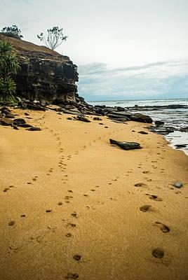 Photograph - Walk Along The Beach by Parker Cunningham