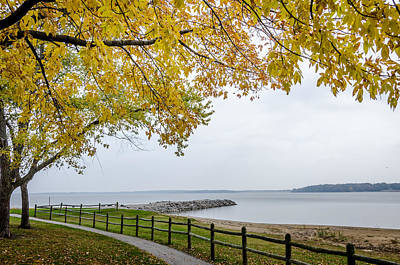 Photograph - Walk Along The Shoreside by Debra Martz