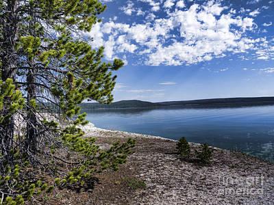 Photograph - Walk By Yellowstone Lake by Brenda Kean