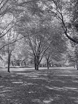 Harpers Ferry Photograph - Walk In The Park by Kim Hojnacki