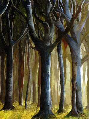 Mountain Valley Painting - Walk In The Woods by James Shepherd