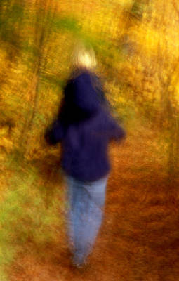 Photograph - Walk In The Woods by Michael Moschogianis