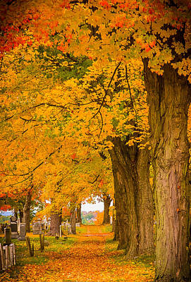 Photograph - Walk The Path To See Where It Goes by Jeff Folger