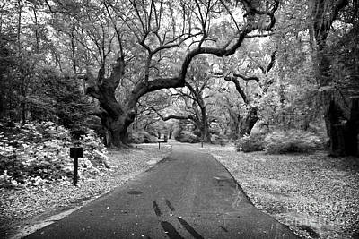Photograph - Walk Through Charles Towne by John Rizzuto
