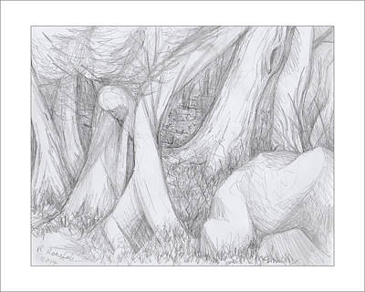 Drawing - Walk Thru The Woods by Ruth Renshaw