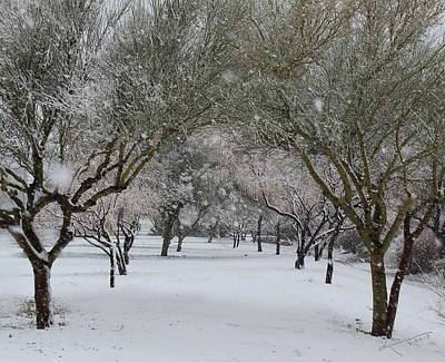 Photograph - Walk With Me In The Snow by Kume Bryant