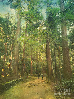 Photograph - Walking Along The Kozan-ji Forest In Kyoto Japan by Beverly Claire Kaiya