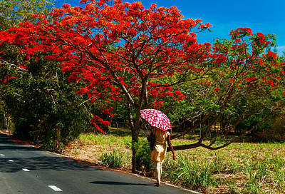 Photograph - Walking Along The Road. Mauritius by Jenny Rainbow
