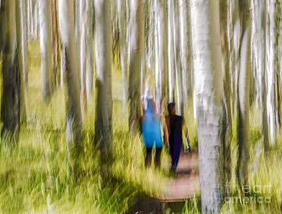 Photograph - Walking Among Aspen by Marianne Jensen