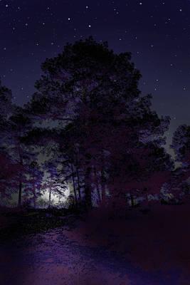 Walking At Night Art Print by Nina Fosdick
