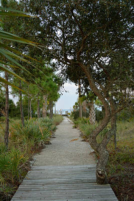Photograph - Walking Down To The Beach by Judy Wanamaker