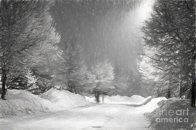 Photograph - Winter Walk by Les Palenik