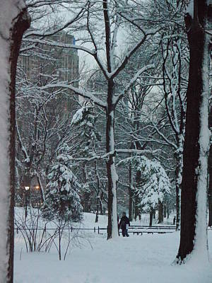 Walking In Snowy Central Park At Dusk Art Print