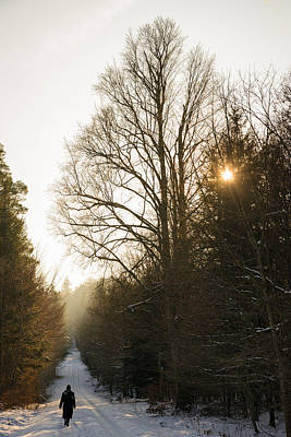 Photograph - Walking In The Forest In Winter by Matthias Hauser