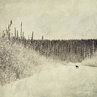 Textured Landscape Photograph - Walking Luna by Priska Wettstein