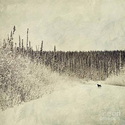 Walking Luna Art Print