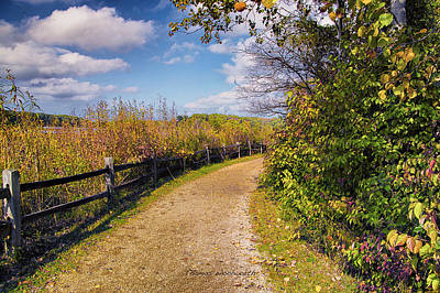 Little Red School House Photograph - Walking On Sunshine by Thomas Woolworth