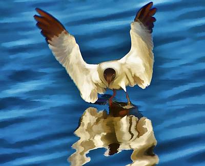Art Print featuring the photograph Walking On Water by Pamela Blizzard