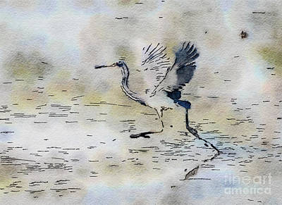 Photograph - Walking On Water - Tricolored Heron by Kerri Farley