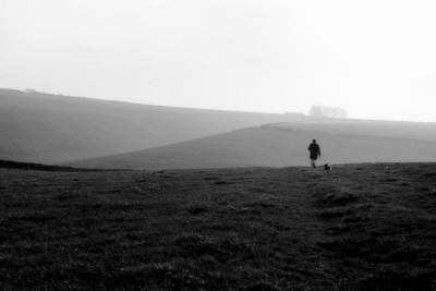 Photograph - Walking The Dog by Guy Pettingell