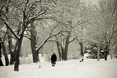 Snowy Photograph - Walking The Dog In A Winter Wonderland by James BO  Insogna