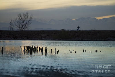 Steve Krull Royalty-Free and Rights-Managed Images - Walking the Dog by Steve Krull