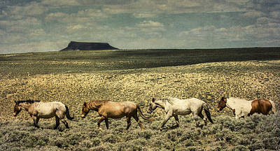 Photograph - Walking The Line At Pilot Butte by Lou  Novick