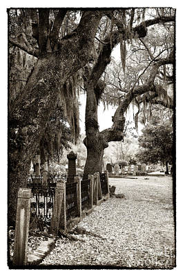 Photograph - Walking The Line by John Rizzuto