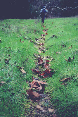 Fallen Leaves Photograph - Walking The Path Less Traveled by Laurie Search
