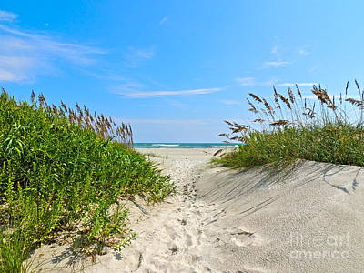Photograph - Walking Through The Sea Oats by Eve Spring