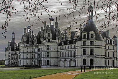 Food And Flowers Still Life Rights Managed Images - Walking to Chambord Royalty-Free Image by Elvis Vaughn
