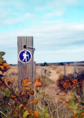 Cape Cod Photograph - Walking Trail By The Sea by Brooke T Ryan
