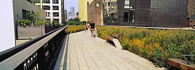Walkway In A Linear Park, High Line Art Print