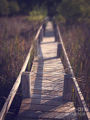 Walkway Through The Reeds Appalachian Trail Art Print by Edward Fielding